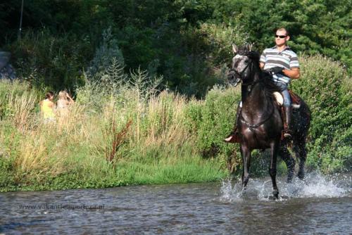 Paardrijden-1